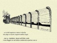 Ombre, Voci, Silenzi nei campi di concentramento